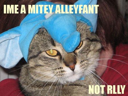 im a mitey alleyfant -- not rlly