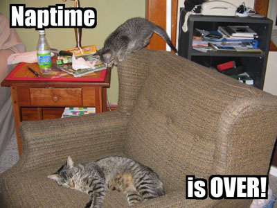 Naptime is OVER
