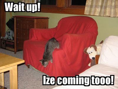 Wait up! Ize coming tooo!