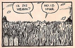 Laugh Out Loud Cats - Iowa